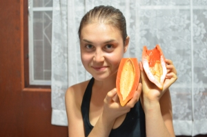 I got that papaya from a tree outside our house!